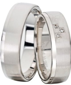 Palladium Satin Finish Wedding Ring with Polished Rail Ring